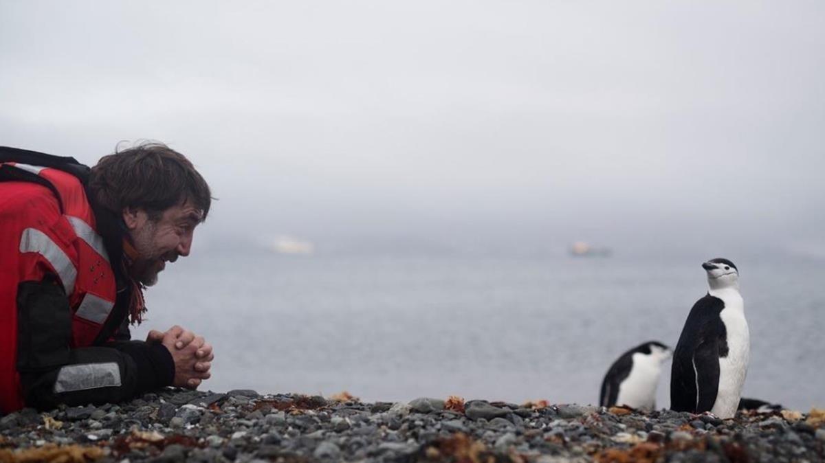Javier Bardem, saludando a unos pingüinos en la Antártida.
