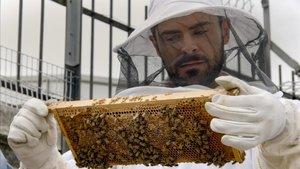 Un Efron apicultor en 'Zac Efron: Con los pies sobre la tierra'.