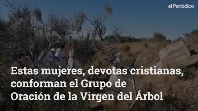 2019 04 elpeirdico virgendelrbol