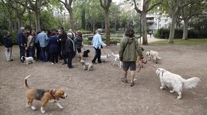 Los responsables municipales, durante la presentación de las obras de rehabilitación del Turo Park. A su lado, propietarios de perros disconformes con el anuncio de no permitir el acceso demascotas al jardín.