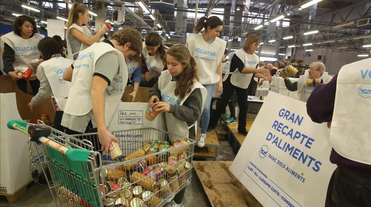 Clasificación de alimentos en el Parc Logístic de la Zona Franca tras una de las jornadas del último Gran Recapte.