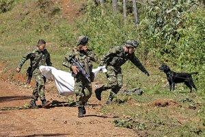 En el departamento de Nariño operan disidencias de las FARC, la guerrilla del Ejército de Liberación Nacional (ELN) y bandas de origen paramilitar dedicadas al narcotráfico.
