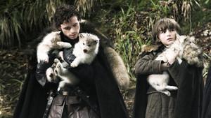 Imagen de la serie Juego de tronos en las que aparecen los cachorros de los famosos lobos huargos.