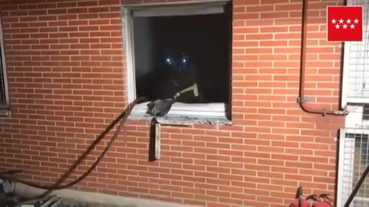La resta de veïns de limmoble van poder sortir pel seu propi peu.