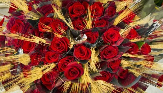 Rosas preparadas para Sant Jordi.
