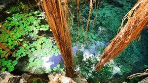 El cenote de Xbaatun, la razón, probablemente, de que los mayas eligieran aquel lugar para levantar una pirámide.