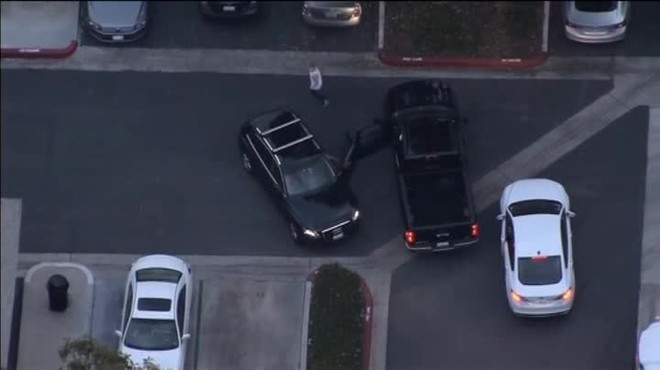 Roba un cotxe i acaba sent atrapat per un gos policia