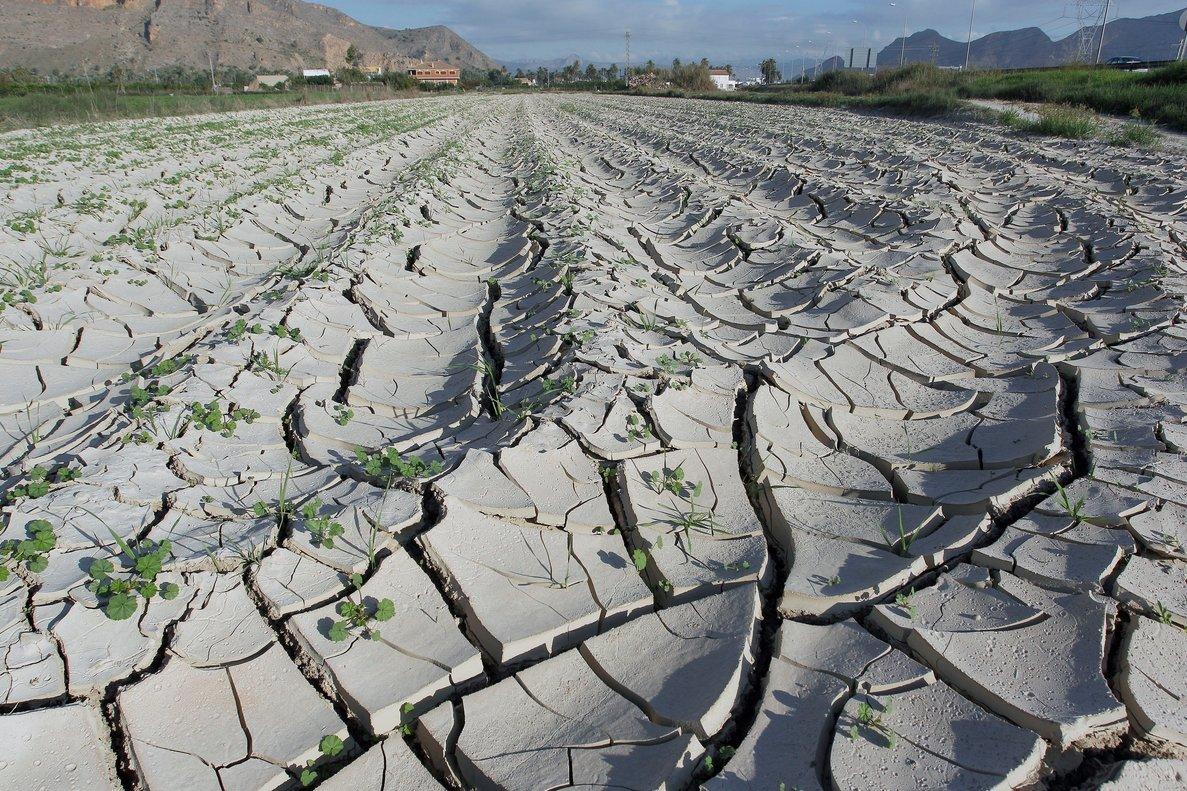 El cambio climático, uno de los principales riesgos a los que se enfrentan las empresas.