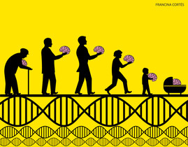 ¿Aún evolucionamos los humanos?