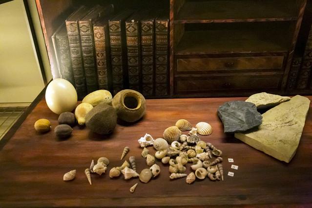 Alguns dels objectes que es poden trobar a Salvadoriana, una exposició sobre el patrimoni científic de Barcelona.