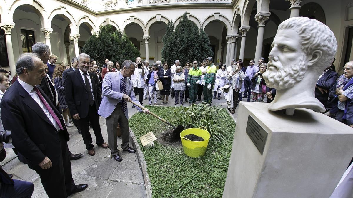 Plantación del árbol de Hipócrates en la UB.