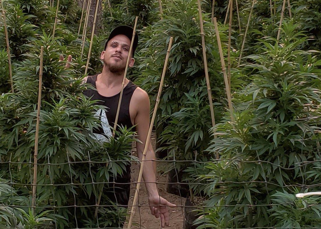 Iván Lerman, empresario marihuanero de Uruguay.