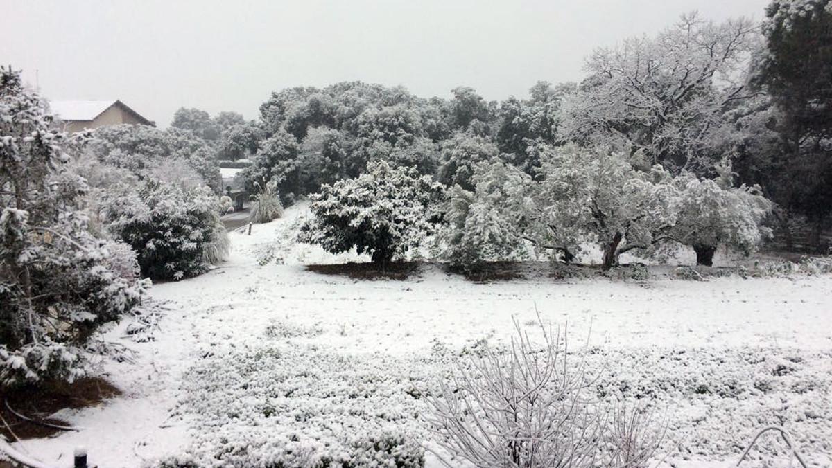 LAmetlla del Vallès(Vallès Oriental) presenta este aspecto tras la nevada.