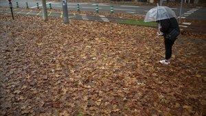 Aceras cubiertas de hojarasca en el Poblenou.