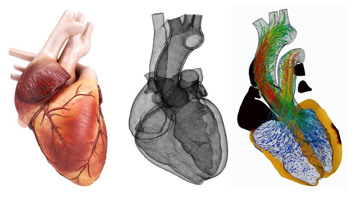 Barcelona acull un projecte per crear cors virtuals