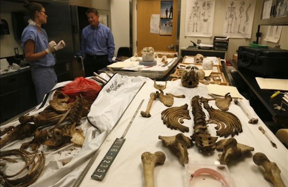 En el laboratorio anatómico-forense se recomponen los cuerpos descompuestos y se toman muestran de ADN.