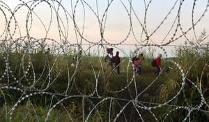 Casi 9.000 inmigrantes cruzan la recién edificada valla alambrada de Hungría