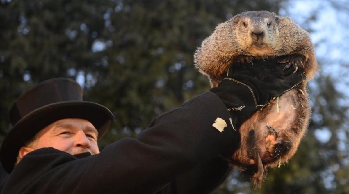 John Griffiths muestra la marmota Phil a la multitud reunida este jueves en Punxsutawney.