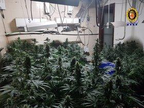 L'incendi en una vivenda de Terrassa deixa al descobert una plantació de marihuana