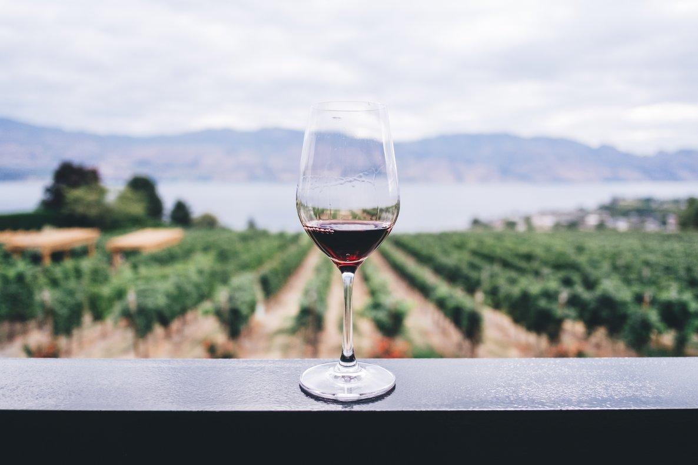 Cómo tener en casa tu propia vinoteca