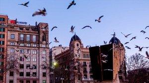 El fiscal reclama presó per a una xarxa corrupta de pisos turístics a Ciutat Vella
