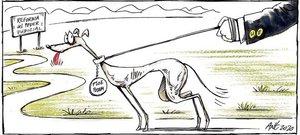 garner-cat-16102020