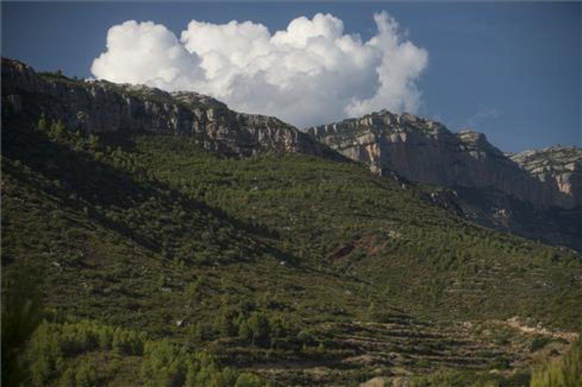Onada de calor: l'accés al Montsant es tancarà aquesta mitjanit per risc d'incendi
