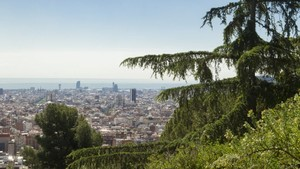Barcelona aposta per la naturalització dels espais verds
