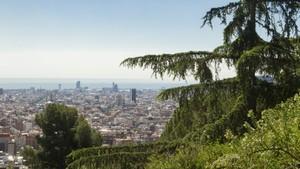Vista de Barcelona desde una zona verde.