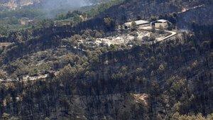 Árboles quemados hace 10 años que todavía se mantienen en pie en la zona afectada por el incendio de Horta de Sant Joan.