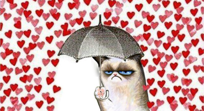 Imagen de Sin Valentín