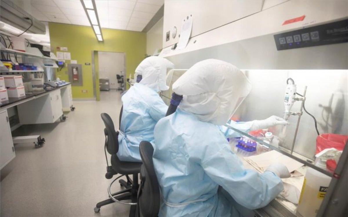Científicos investigan el coronavirus de Wuhan.