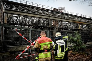 Krefeld (Germany), 01/01/2020.- Firemen stand in front of the completely burned out ape house of the zoo in Krefeld, Germany, 01 January 2020. All animals, in total more than 30, died during the fire at the Krefeld Zoo in the New Year's night. The dead animals include chimpanzees, orangutans and two older gorillas. The criminal police in Krefeld currently assume that so-called sky lanterns may have set the monkey house on fire on New Year's Eve. According to reports, eye-witnesses had seen sky lanterns land on the roof of the building. (Incendio, Alemania) EFE/EPA/SASCHA STEINBACH