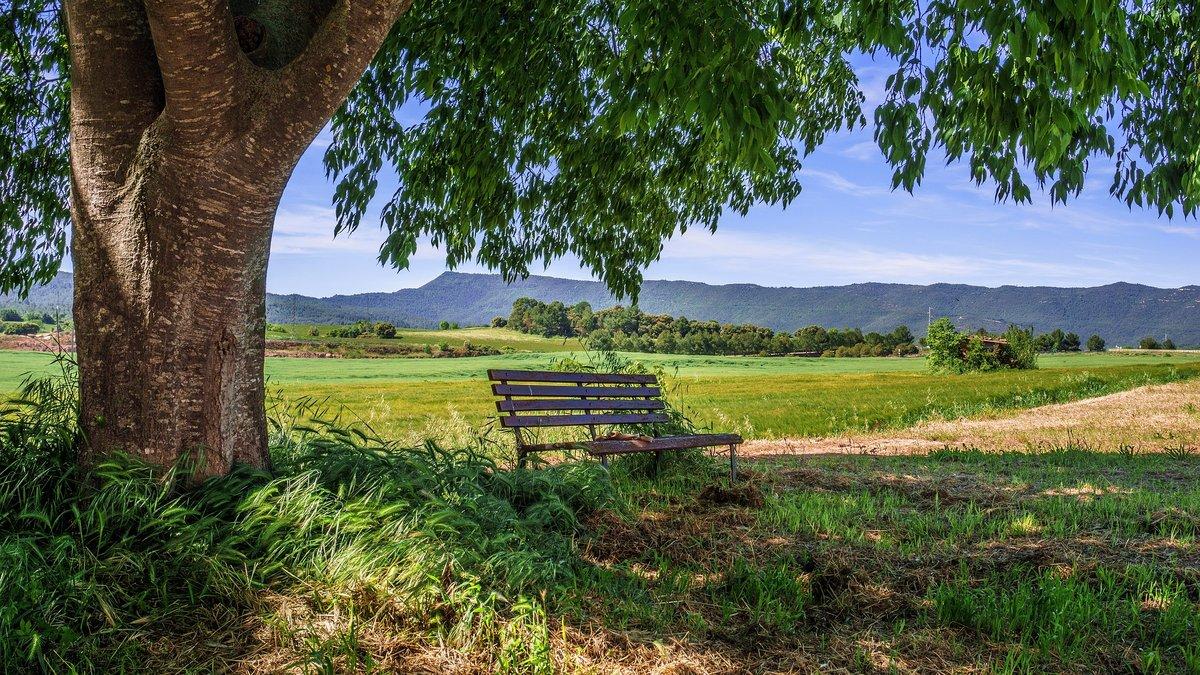 El número de alojamientos rurales en España ha crecido casiun 30% en 10 años.