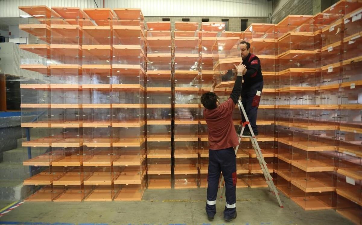 Unos operarios recogían urnas del almacén del Ayuntamiento de Barcelona para llevarlos a los colegios electorales antes del 20-D.