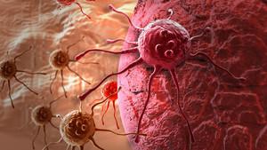 Recreación en tres dimensiones de una célula cancerosa.