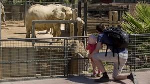 La zona temática de la sabana del Zoo de Barcelona.