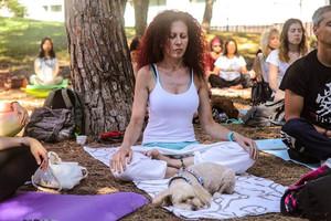 Una sesión del Barcelona Yoga Day.