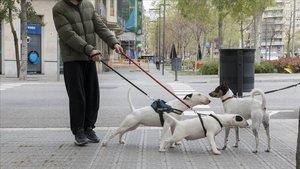 ¿Puc passejar el gos durant el toc de queda? ¿Hi ha altres excepcions?