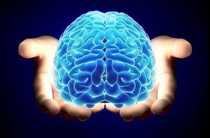 El núcleo endorestiforme se encuentra dentro del pedúnculo cerebeloso inferior.