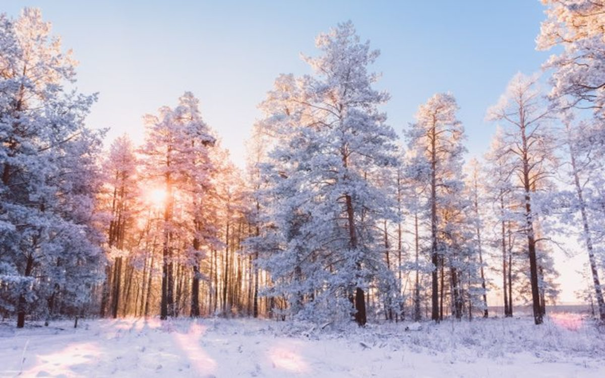 20 Frases E Imágenes Para Recibir El Invierno 2019 2020