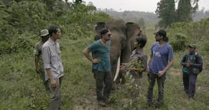 Leonardo DiCaprio, conFarwiza Farhan y Rudi Putrae, en Indonesia, en la grabación del documental Before the flood.