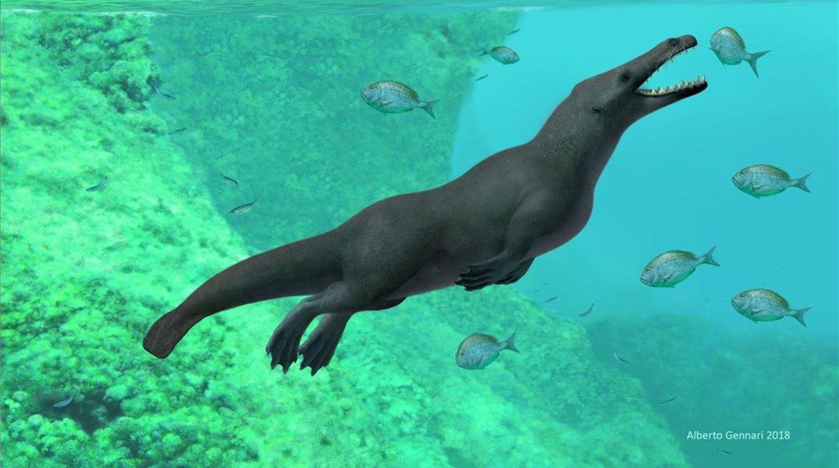 Hallaron restos fósiles de una ballena con cuatro patas — Perú