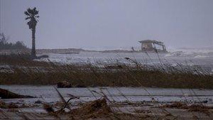 El flagell del 'Gloria' deixa un delta de l'Ebre encara més fràgil