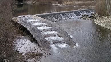 Los pasos fluviales recuperan las migraciones de los peces