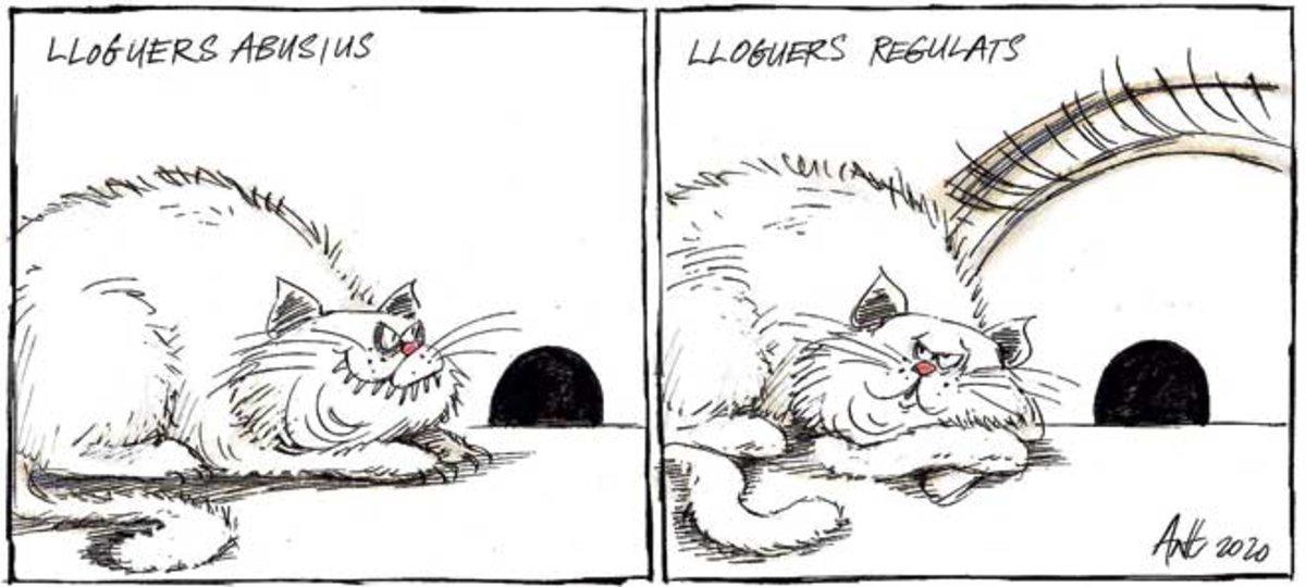 garner-cat-10092020