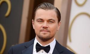 Leonardo DiCaprio, en la ceremonia de los Oscar del 2014.