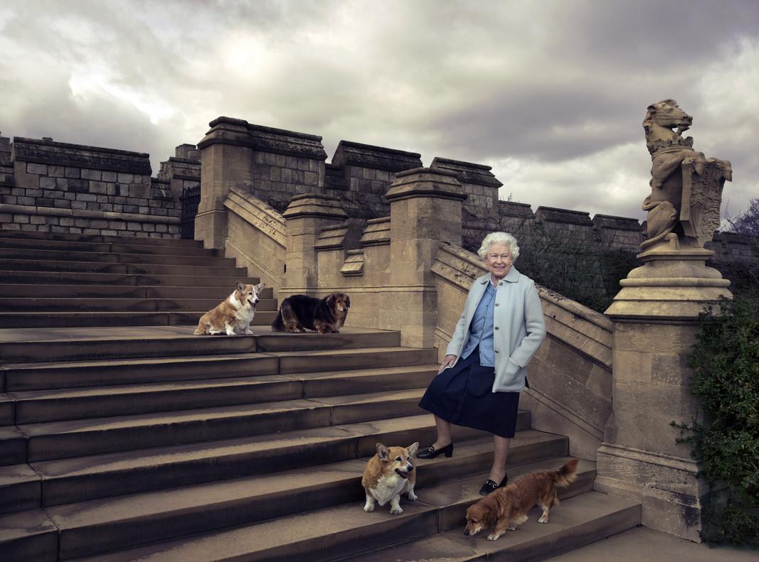 La reina, en los jardines de Windsor, con cuatro de sus perros.