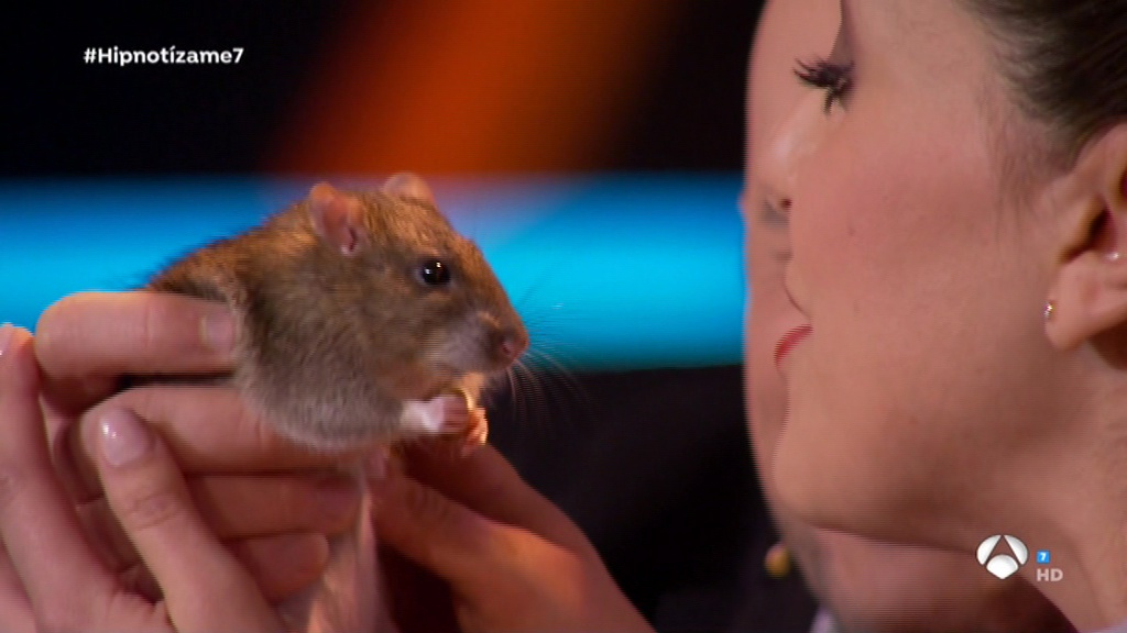 Roko, enternecida ante la rata, en Hipnotízame (Antena 3 TV).