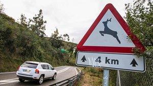 Señal de peligro por la presencia de animales en la carretera de la Arrabassada, entre Barcelona y Sant Cugat del Vallès.